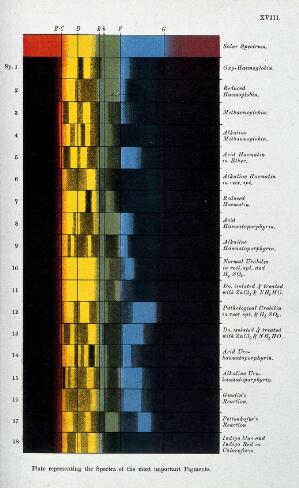 view Optics: spectra of various pigments, compared with that of our Sun. Coloured process print by Cassell.