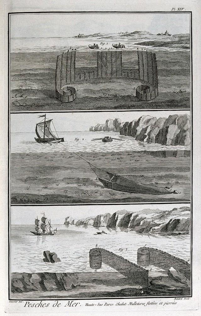 Image Catalogue Search Cobbett William 1762 1835 Wellcome