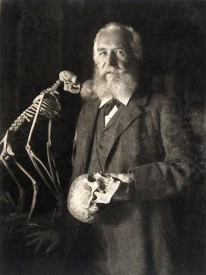 view Ernst Heinrich Philipp August Haeckel. Photogravure after N. Perscheid, 1904.