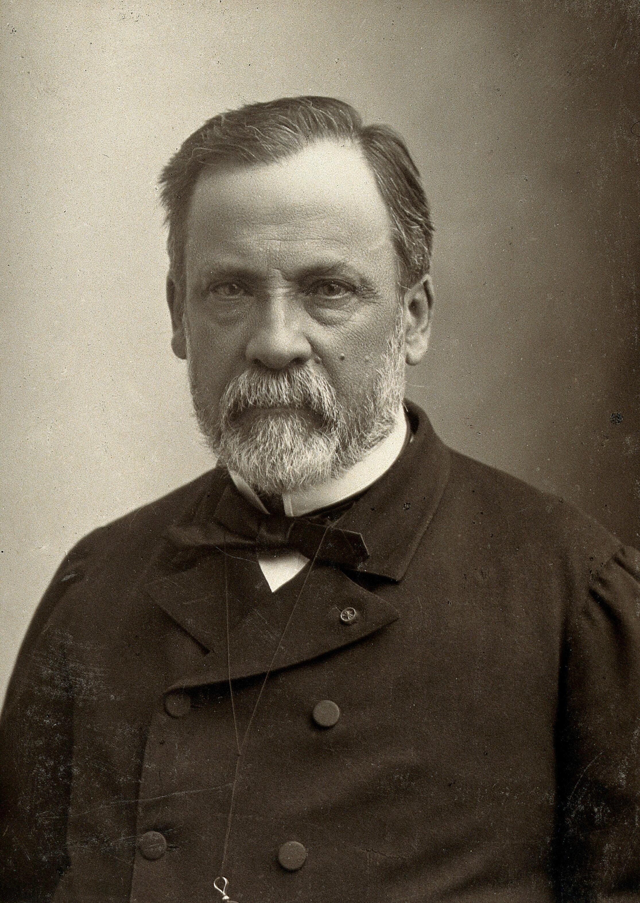 the life and discoveries of louis pasteur Louis pasteur the life and discoveries of louis pasteur was a chemist, humanist, and scientist you internet capitalize in essay do an - and even an artist cite.
