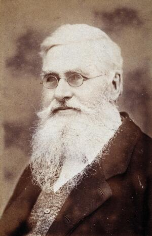 view Alfred Russel Wallace. Photograph by Sims, 1889.