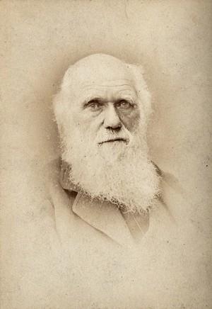 view Charles Robert Darwin. Photograph by Barraud.