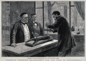 view Louis Pasteur (left) watching a colleague trephining a chloroformed rabbit during his research on rabies vaccination. Wood engraving (?), 1885.
