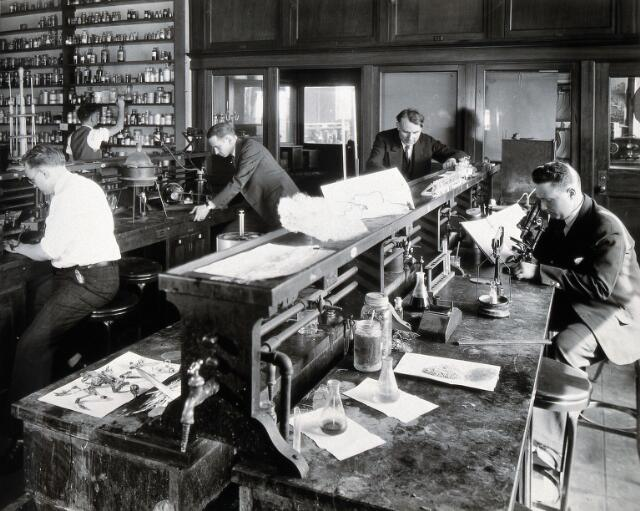 Philadelphia College of Pharmacy and Science: students experimenting with plants in a laboratory. Photograph, c. 1933.