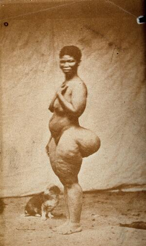 view Standing woman, full-length side view, with enlargement of the buttocks (steatopygia). Photograph.