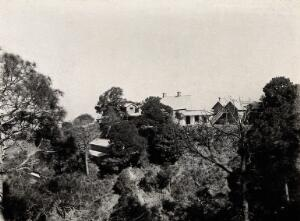 view The Pasteur Institute, Kasauli, India: view to the north of buildings and foliage. Photograph, ca. 1910.