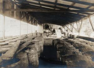 view Ancon, Panama Canal Zone: a mosquito oil plant interior showing rows of barrels. Photograph, 1910.