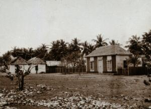 view Providencia Island, Venezuela: houses for leprosy sufferers. Photograph, 1890/1910.