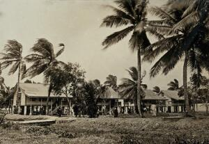 view Leper asylum, Guyana (formerly British Guiana): wooden residences for male patients. Photograph, 1880/1900.