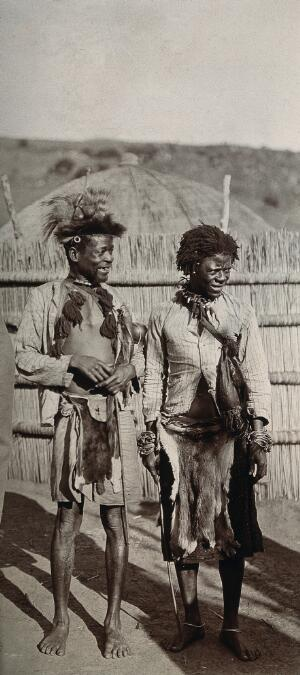 view Swazi witchdoctors wearing animal skins and jewellery. Photograph, 1910/1930.
