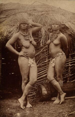 view South Africa: Zulu women, bare-chested and wearing ornamental jewellery, posing outside a mud hut. Photograph, 1880/1890.