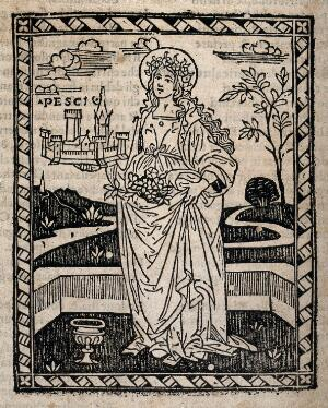 view Saint Dorothy. Woodcut.