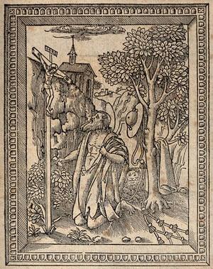 view Saint Jerome. Woodcut (?).