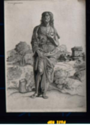 view Saint John the Baptist, standing. Stipple print by N. Nelli after Campagnola, 1550/1570.