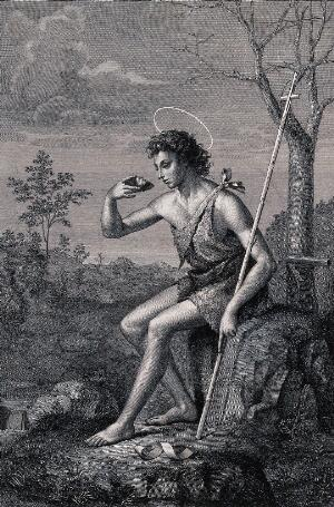 view Saint John the Baptist as a youth, in wilderness. Engraving by F. Rosaspina after G. Bugiardini, 1800/1840.