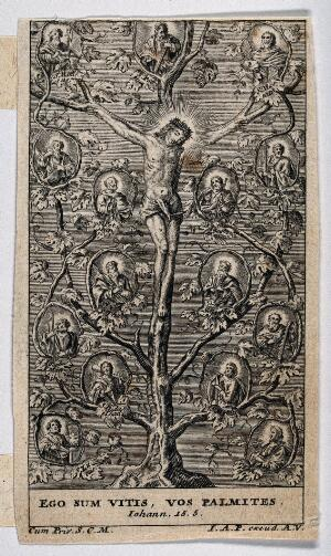 view Christ as the vine; the Apostles and Evangelists as branches. Engraving.