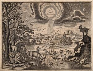 view God, as a triangle representing the Trinity, pours light upon the Garden of Eden. Engraving.