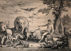 view Adam naming the animals. Etching by G. Scotin and J. Cole after H. Gravelot and J.B. Chatelain, 1743.