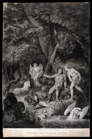 view The angel Raphael appears among the animals in the garden of Eden to gaze upon Adam and Eve. Aquatint with etching by R. Pollard, 1792, after C. Metz.