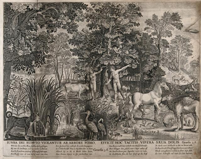 Adam and eve with the serpent and other animals in the - Who was the serpent in the garden of eden ...