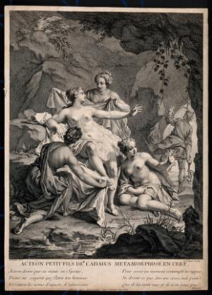 view Diana [Artemis]: she changes Actaeon into a deer. Engraving by D. Sornique after B. Boullogne.