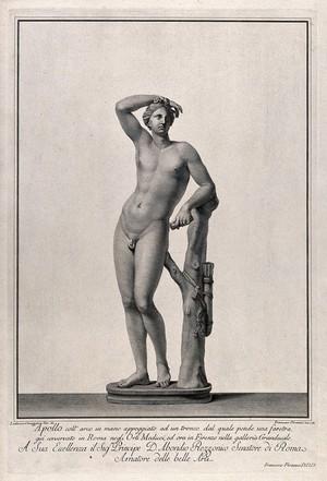 view Apollo. Engraving by F. Piranesi, 1781, after L. Corazzari.