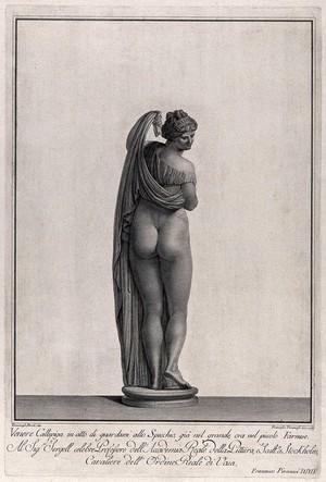 view Venus [Aphrodite]: the Callipygian Venus. Engraving by F. Piranesi, 1783, after T. Piroli.