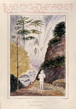 view Malaya: a man at the foot of a huge waterfall on Penang Island. Watercolour by J. Taylor, 1879.