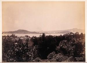 view Auckland, New Zealand: part of Auckland harbour. Albumen print.