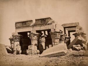 view The Temple of Kom Ombo, Aswan, Egypt: columns. Photograph by Pascal Sébah, ca. 1875.
