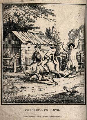 view A young boy rides on the back of a pig scattering the chickens, one boy falls off and another cheers them on. Etching.