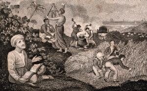 view Three young boys cut corn with a scythe and scenes from different lands surround them. Engraving.