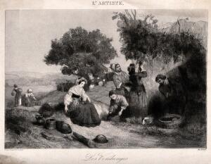 view People harvesting grapes. Etching by C. Nanteuil.