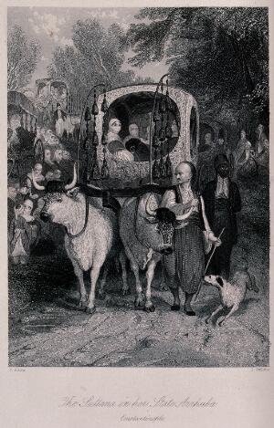 view A sister of the Sultan of the Ottoman empire being conveyed in her official carriage drawn by two oxen. Engraving by J. Jenkins after T. Allom.