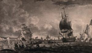 view Men are fishing for whale in small boats with harpoons; larger sailing ships are in the distance. Aquatint.