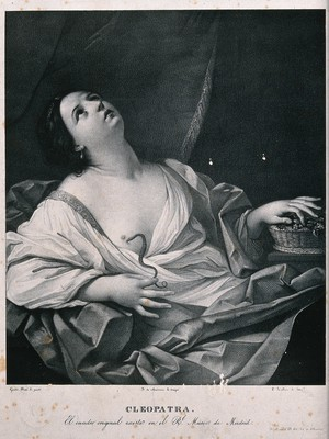 view The suicide of Cleopatra: Cleopatra lies on her bed clasping the tail of the asp that just bit her. Lithograph after Guido Reni.