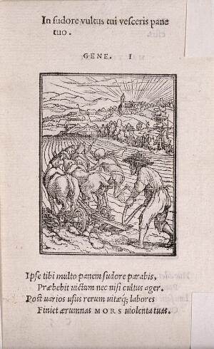 view The dance of death: the ploughman. Woodcut by Hans Holbein the younger.