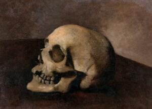 view A skull. Oil painting.