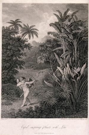 view Cupid inspiring plants with Love, in a tropical landscape. Engraving by F. Bartolozzi and H. Landseer, c.1812, after P.Reinagle.
