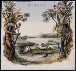 view Giant water lilies (Victoria amazonica) on a lake bordered by two Guianan men and plants. Coloured lithographic reproduction of an engraving by M. Gauci, c. 1814, after C. Bentley.