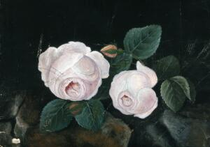 view Two white roses, in a still-life. Watercolour by J.D.(?), 1885.