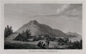 view A fortified village (a hippah) in New Zealand; encountered by Captain Cook during his third voyage, 1776-1780. Engraving by B.T. Pouncy after J. Webber, 1780/1785.