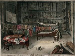 view Paramaribo, Surinam: the room of a natural historian. Watercolour, 1845.