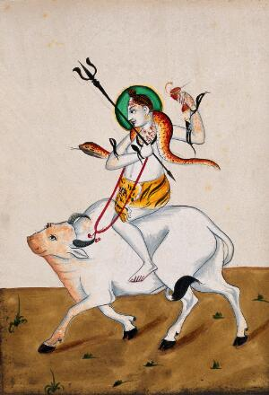 view Shiva with his symbols riding Nandi. Gouache drawing.