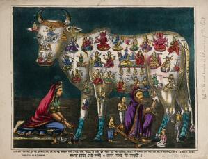 view The cow as mother of the world: with pictures of Hindu deities all over its body. Coloured lithograph.
