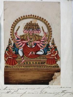 Indian medicinal Plants and Drugs  Curcuma  | Catalogue search