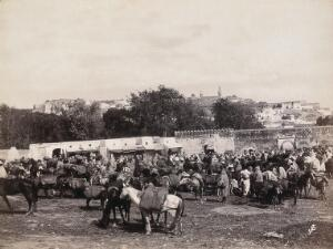 view Algeria (?): marketplace with horses and donkeys carrying heavy loads. Photograph.