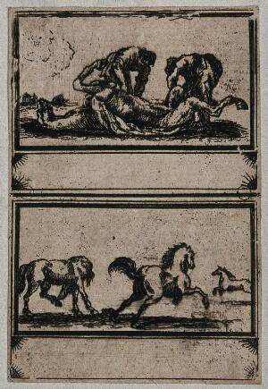 view Top, two men inspecting a dead horse; bottom, three horses running. Etching.