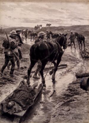 view World War One: a horse is removing a wounded man on a sledge. Watercolour by F. Matania, ca. 1918.