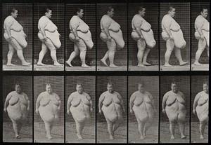 view A gargantuan woman walking. Collotype after Eadweard